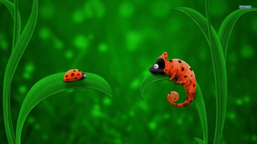 Ladybugs-Ladybug-And-Chameleon-Animal-Nice-Wallpapers (1)
